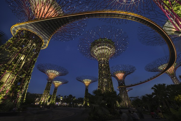 IUP_Gardens by the Bay, Bay South_photography Lighting Planners Associates Toshio Kaneko