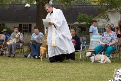 Blessing of the Animals 2013-38