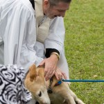 Blessing of the Animals 2013-75