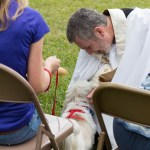 Blessing of the Animals 2013-81