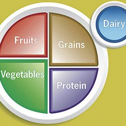 MyPlate guidelines