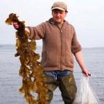 Iain McKellar  Just Seaweed