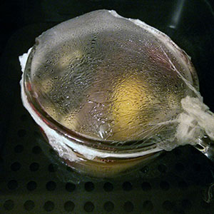 Wine, sugar and spices in the SousVide Supreme Demi, the heat doing its thing.