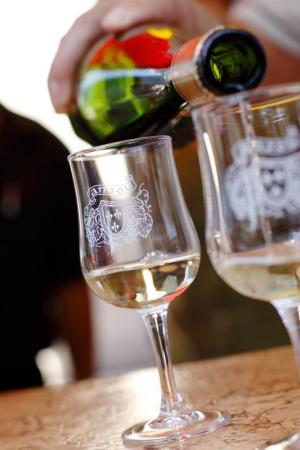 A perfect glass of Sauvignon ©InterLoire Stephane Fremon