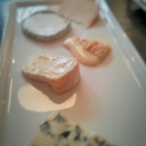 A little out of focus. The cheese was that good.