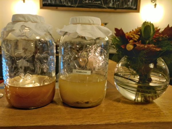 Kombucha fermenting happily at Aizle.