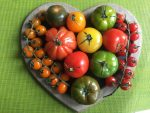Cook's notes – love tomatoes