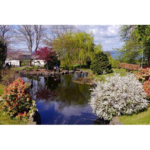 Medium Crop Of Free Garden Images