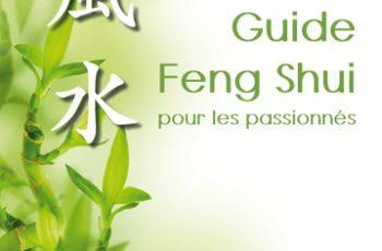 PREMIER-GUIDE-FENG-SHUI---IFS---