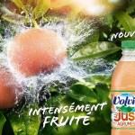 Jus de Volvic, Le Jus de Fruit à l'état Sauvage