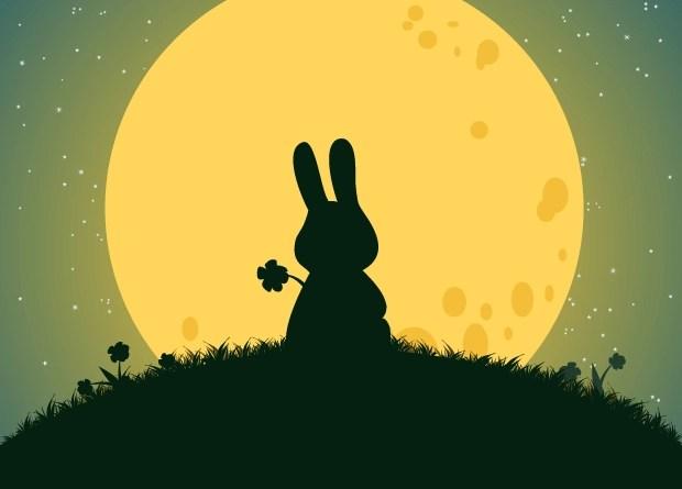 conejo en la luna