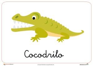 Fichas de Animales Salvajes: Cocodrilo