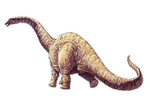 dinosaurios 02