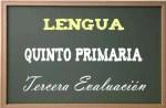 Lengua primaria 5-3