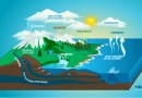 Ciclo del agua: ¿de dónde sale la lluvia?