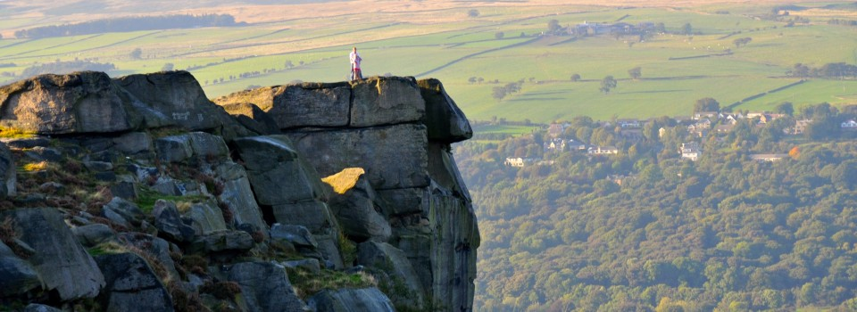 Cow and Calf Ilkley