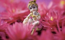 女神は性エネルギーから誕生!? インド発祥、愛の奥義『カーマ・スートラ』part.2 秘教タントラとクンダリーニ
