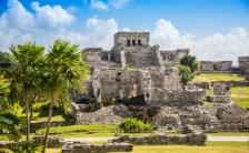 小さな好奇心が世界を変える。世紀の大発見! <br>15歳の少年が発見したマヤ遺跡の秘密は本当?
