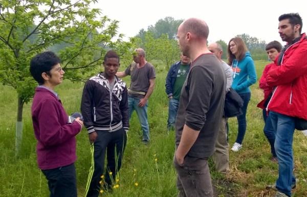 Visita técnica a varias plantaciones de castaños.