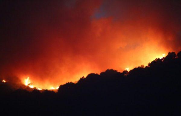 Incendio entre los municipios bercianos de Trabadelo y Barjas. / C. Sánchez