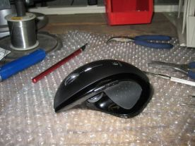 reassembled mouse
