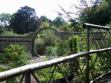 Jardín de plantas medicinales chinas