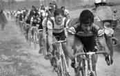 Intervista a Francesco Moser