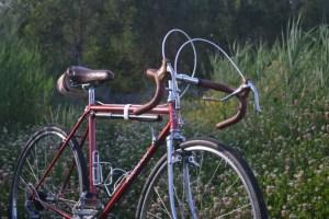 6473 Peugeot Anjou Passepartout 16