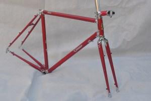 6718 Elessar bicycle 95