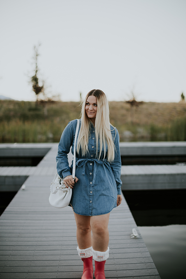 BB Dakota Denim Dress