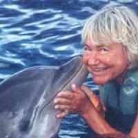 Das Erlebnis für alle: Kunststücke mit Delfinen