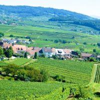 Kaiserstuhl: Wo nicht nur die Weine von der Sonne verwöhnt werden…