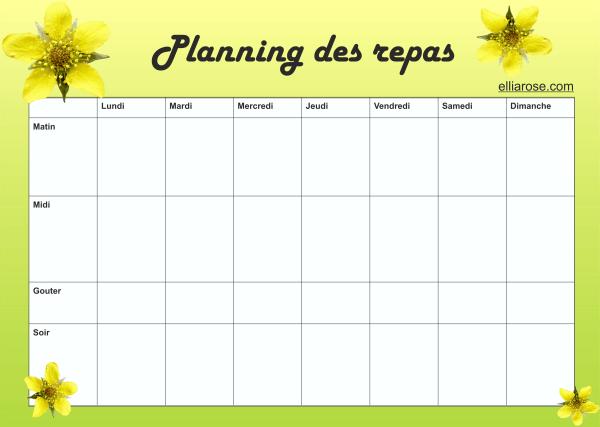 Planning Fleur Ellia Rose 7