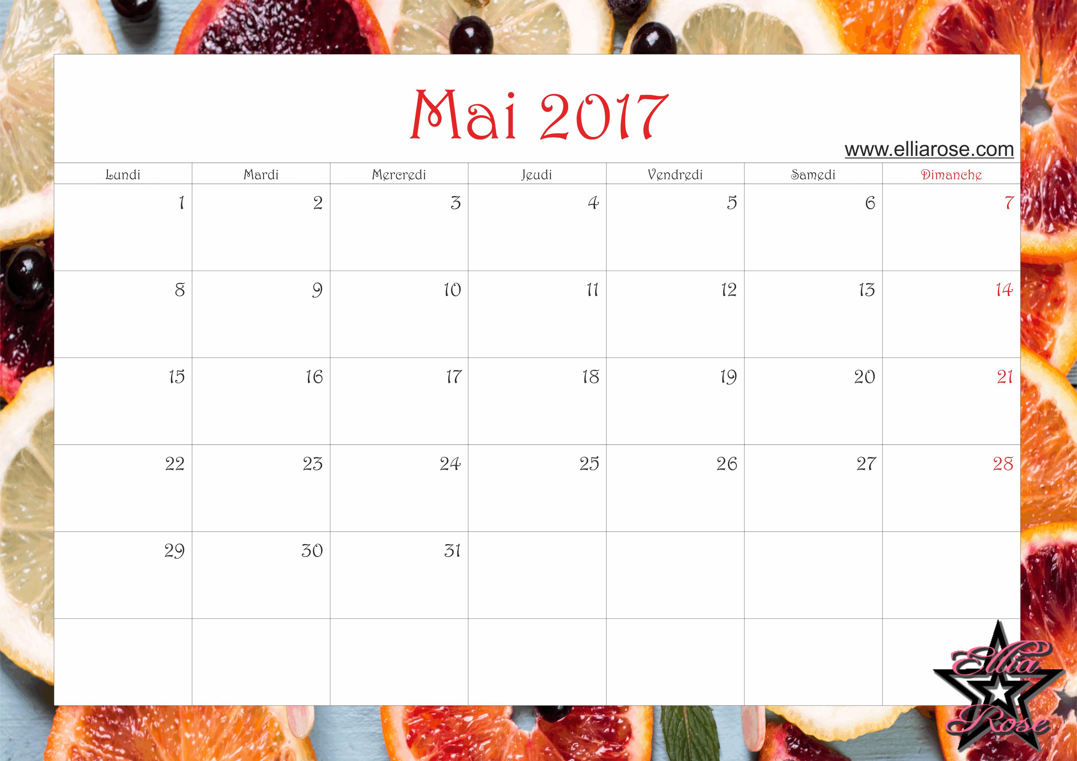 Calendrier gratuit imprimer agrumes 2017 ellia rose - Calendrier du mois de juin 2017 ...