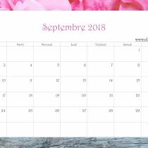 Calendrier Ellia Rose bois de rose gris 2018 Septembre