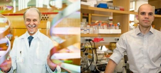 Έλληνες ανακάλυψαν νέα γονίδια που ευθύνονται για τoν καρκίνο του δέρματος