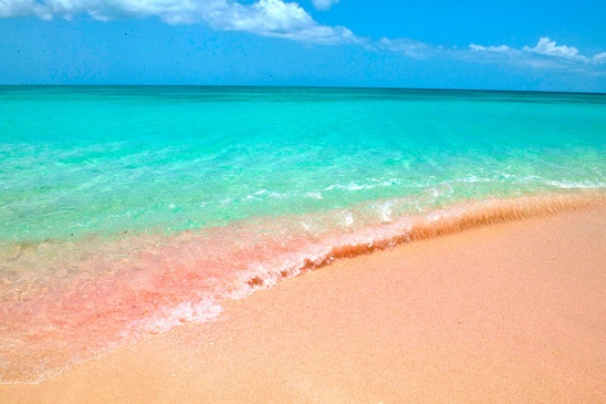 Pink Beaches of Barbuda – Caribbean Sea