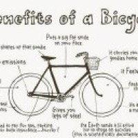 Biking is booming globally