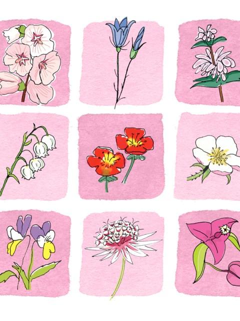 kaartje2go bloemenkaart