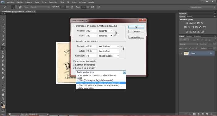 7-transfers-ampliar-pixeles-de-una-imagen