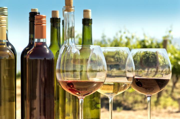 Da harmonização à temperatura: escolha o vinho perfeito para cada situação