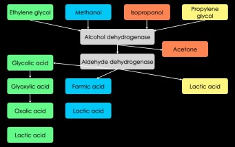 toxic alcohol metabolism