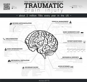 L'infografica realizzata da Tommaso