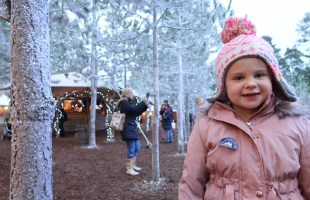 Lapland UK 2016 – What is it really like?