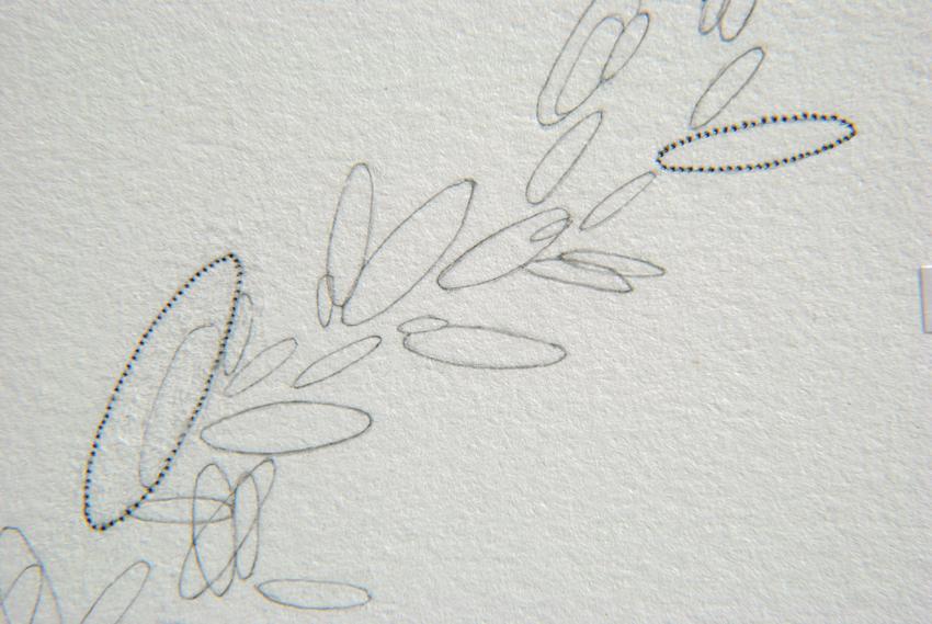 MANDY BONNELL Eloise Butler's Wildflower Garden, 2013, artist's book (detail)
