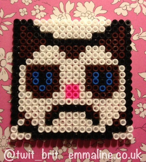 hama bead grumpy cat perler beads coaster by @twit_brit at emmaline.co.uk