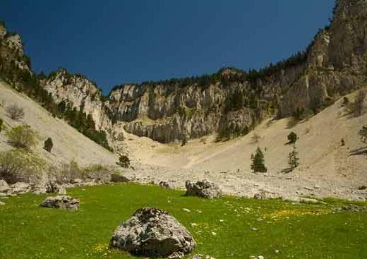 plateau-du-vercors-alpes