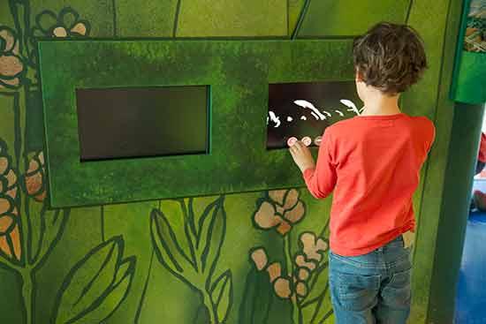 Aquarium-barcelone-enfant