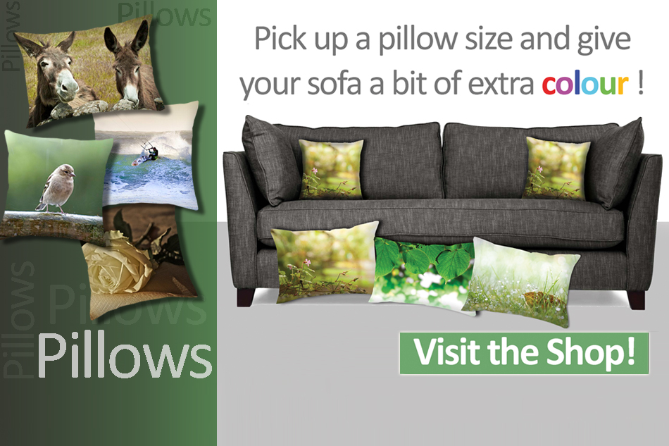 Personalise your Pillows