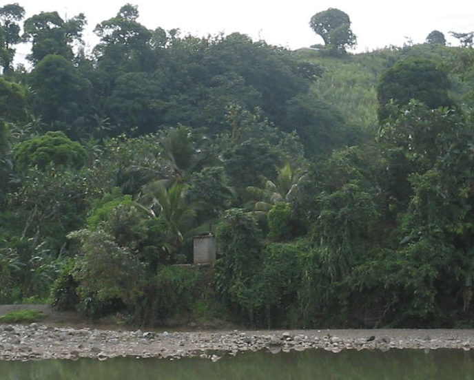 Even in places where there are toilets, they are often poorly designed or poorly placed. And although they provide a private place to go to the bathroom, they still have a tremendous amount of risk of water contamination. This latrine is located just above a river, where people are getting their bathing and drinking water.